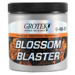 Grotek - Blossom Blaster 20g