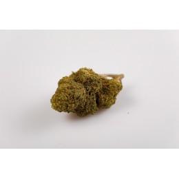 Candy Kush 5 grammi