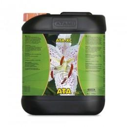 ATA - XL 5L.